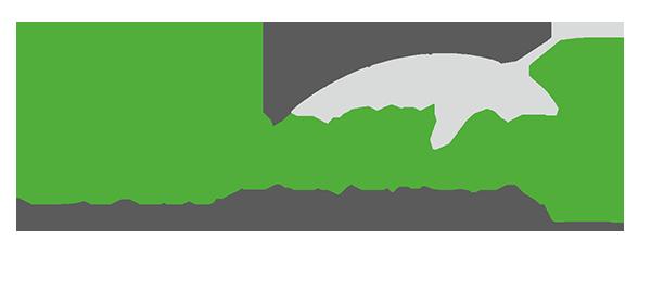 damarija racing